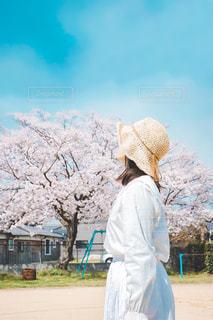 わたしの春の写真・画像素材[3086702]