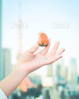 東京タワーとイチゴの写真・画像素材[3151530]