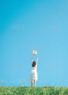 飛んでいけの写真・画像素材[3252695]
