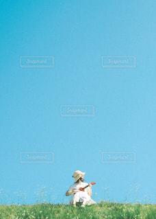 ウクレレと夏の写真・画像素材[3252827]