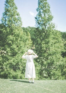 森の妖精の写真・画像素材[3438186]