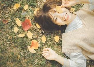 秋の写真・画像素材[3808130]