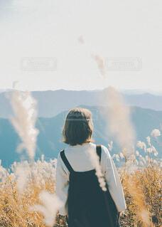 秋の写真・画像素材[3909140]
