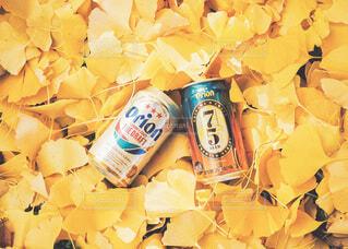 オリオンビールの写真・画像素材[3913852]