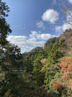 空,屋外,山,樹木