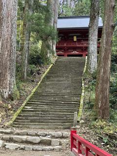 山の中の寺院の写真・画像素材[3036600]
