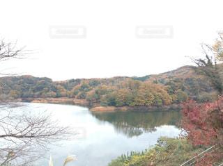 自然,風景,秋,湖,水面,山,景色,樹木