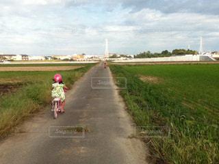風景,空,自転車,屋外,雲,散歩,道路,小道,子供
