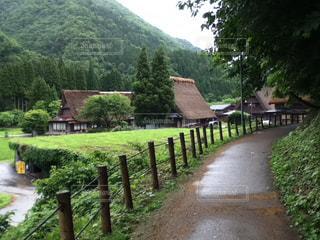 風景,空,散歩,田舎,景色,小道,家,歩道,昔,五箇山