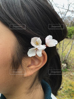 桜の花飾りをつけた少女の写真・画像素材[3061320]
