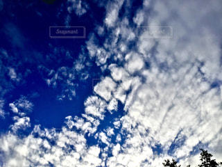 雲と青空の写真・画像素材[3393727]