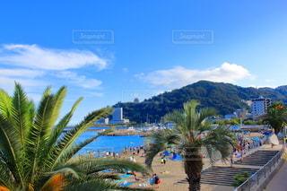 熱海 サンビーチの写真・画像素材[3586311]