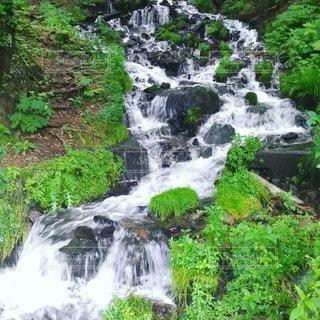 自然,風景,森林,川,水面,滝,丹原