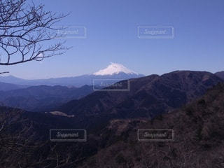 自然,風景,空,富士山,雪,山,樹木,快晴,ハイキング,神奈川,大山