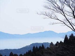 自然,風景,空,屋外,霧,山,丘,樹木,雲海