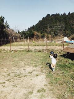 子ども,屋外,幼児,キャンプ場,遊び場,ボール遊び