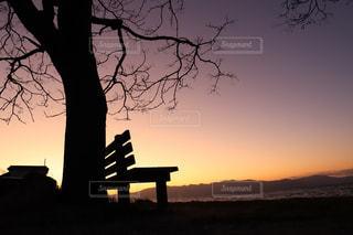 風景,空,木,屋外,太陽,ベンチ,夕方,シルエット,樹木,夕暮れ時