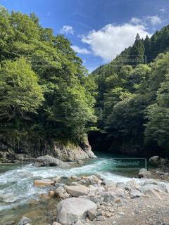 岩の側に木がある岩の川の写真・画像素材[4095473]