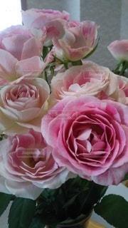 花,ピンク,花束,バラ