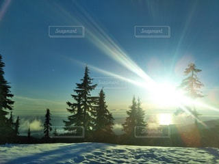 自然,空,雪,太陽,光,旅行,カナダ