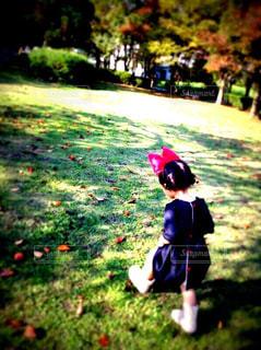 風景,公園,秋,紅葉,屋外,草,樹木,人,幼児,草木