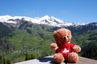 空,海外,山,登山,ぬいぐるみ,旅行,スイス,高原,アルプス,テディベア,新婚旅行,クマ