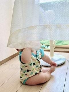 カーテンに隠れる赤ちゃんの写真・画像素材[3331334]