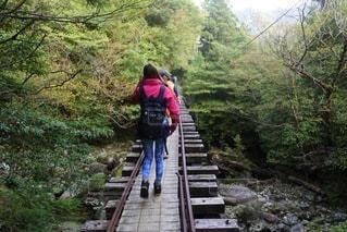 橋の上を歩いている人の写真・画像素材[3583858]