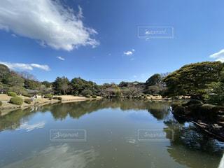 自然,風景,空,屋外,雲,青空,晴天,水面,池,反射,樹木