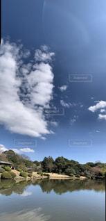 自然,風景,空,木,屋外,太陽,雲,青空,晴天,水面,池,景色,樹木,大地,日中