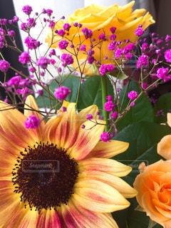 紫色の花で満たされた花瓶の写真・画像素材[3124682]