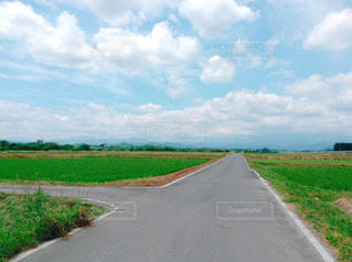 道路の写真・画像素材[3240575]