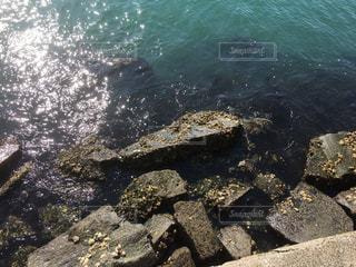 海の写真・画像素材[3240577]