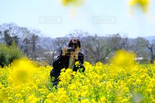 女性,恋人,花,カメラ女子,屋外,黄色,菜の花,景色,カメラマン,菜の花畑,草木,ファインダー越し