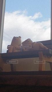 屋内,雲,青空,窓,ベンチ,キャラクター,ブタ,まったり,くつろぎ
