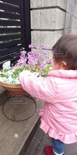 女性,子ども,1人,花,屋外,ピンク,少女,人