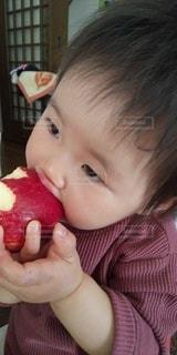 食べ物を食べる子供のクローズアップの写真・画像素材[3217246]