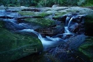 自然,風景,森林,川,水面,池,草,草木,ストリーム,カスケード