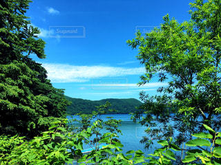 自然,風景,空,森林,木,屋外,湖,森,緑,カラフル,青空,晴天,青,水面,山,景色,鮮やか,樹木,新緑,草木,クラウド