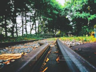 線路の上の写真・画像素材[3052524]