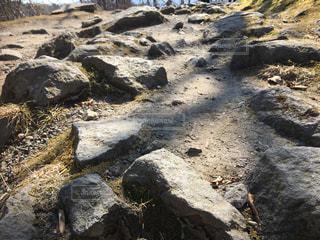岩の道の写真・画像素材[3079207]