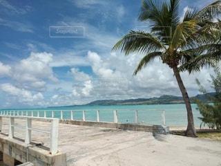 自然,海,空,ビーチ,雲,旅行,ヤシの木,sea,青い,癒やし,休暇