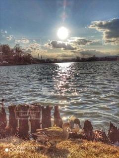 自然,風景,空,屋外,湖,水面,海岸