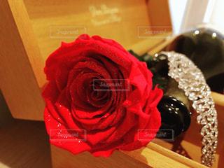 花,赤,花束,バラ,薔薇,シャンパン,ダイヤモンド,ティアラ