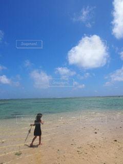 自然,海,空,ビーチ,雲,砂浜,海岸,人