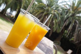 ジュース,果物,樹木,イベント,レモン,グラス,乾杯,ドリンク,パーティー,手元,飲料,柑橘類,ソフトド リンク,オレンジ ジュース,オレンジ色のソフトド リンク