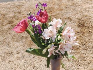 花,花束,花瓶,バラ,地面,草木,フローラ