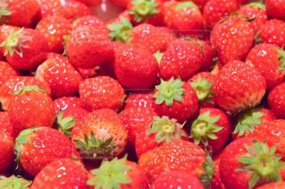 食べ物,緑,赤,果物,果実,たくさん,ベリー,ストロベリー,イチゴ,いちごの山