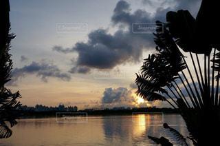 風景,空,南国,ビーチ,夕暮れ,水面,樹木,sunset,サンセット,パーム