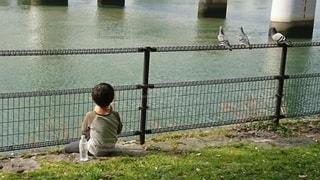 子ども,1人,屋外,川,人,こども,鳩,少年,男の子,はと